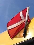 Flag på bus
